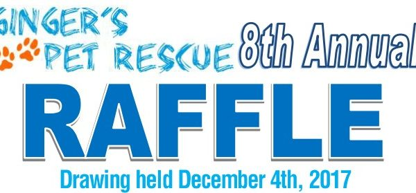Raffle Ticket Gingers Pet Rescue – Raffle Ticket