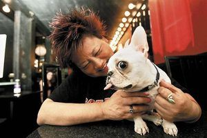 Ginger's Pet Rescue in Seattle Times | Saving Death Row Dogs