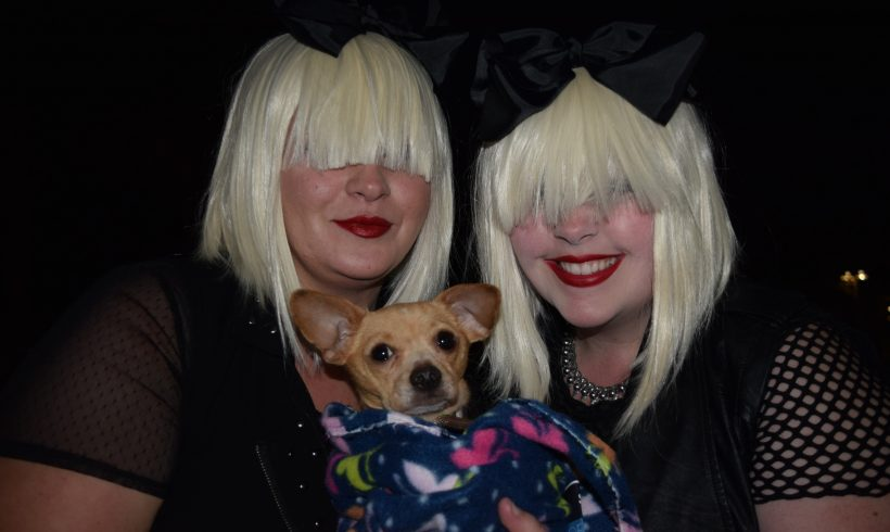 SIA Concert Adoption Success!