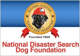 From Rescued to Rescuer | Training Search and Rescue Dogs
